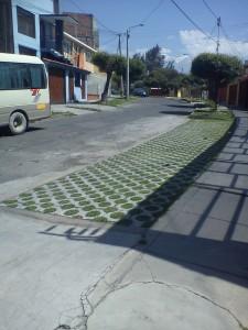 veredas verdes