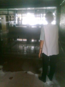 escuela 13